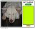 بازی آنلاین Pet Puzzle