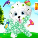 My Puppy Care grooming games
